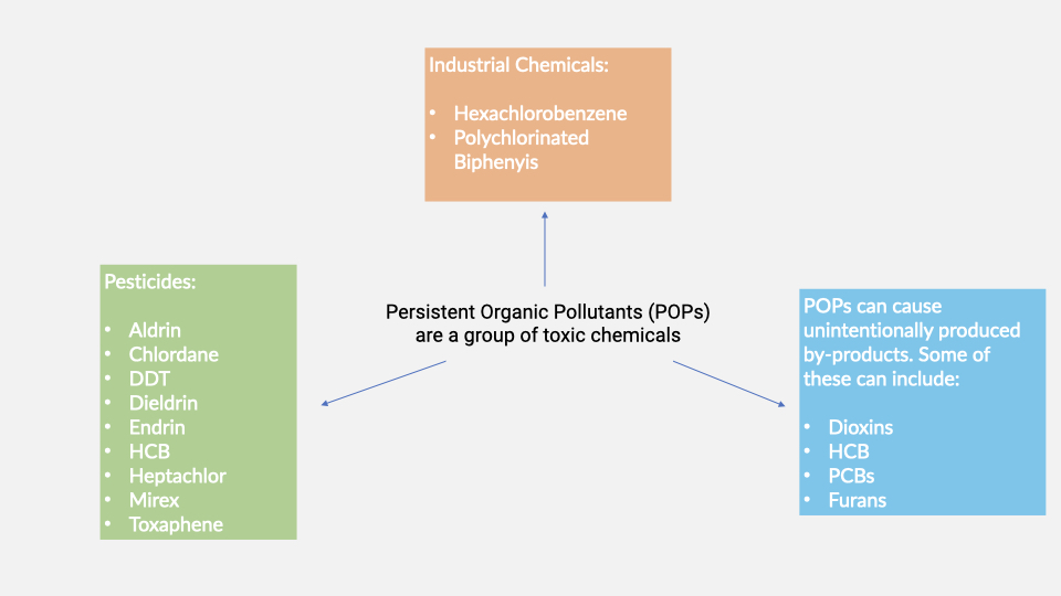 Persistent Organic Pollutants: What are they?